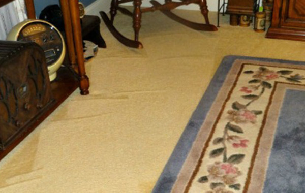 Always Clean With Carpet Maintenance