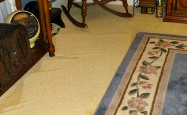 Always-Clean-Carpet-Maintenance-2