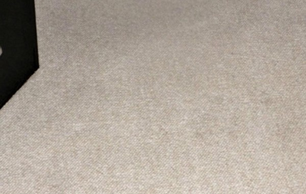 Carpet Cleaning and Spot Removal