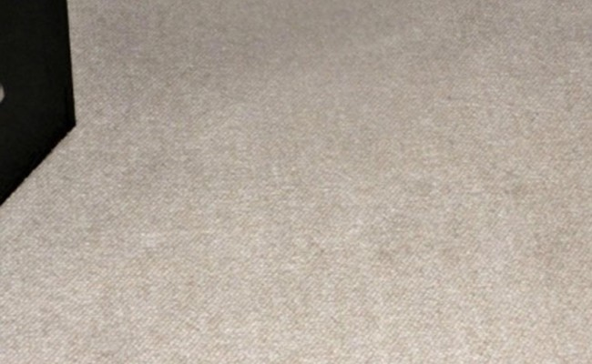 Carpet-Spots-Removed