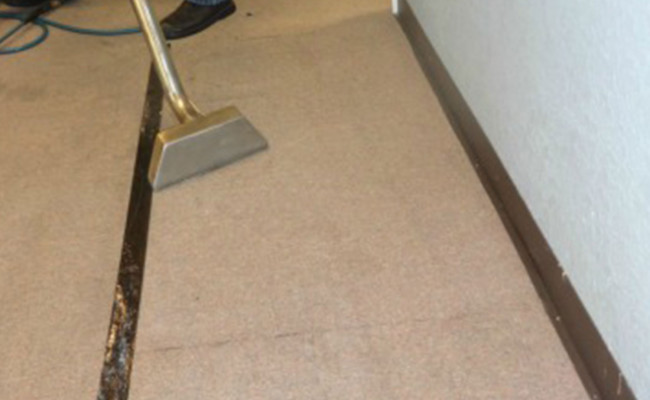 Spot-Removal-and-Carpet-Cleaning-Winter-Garden