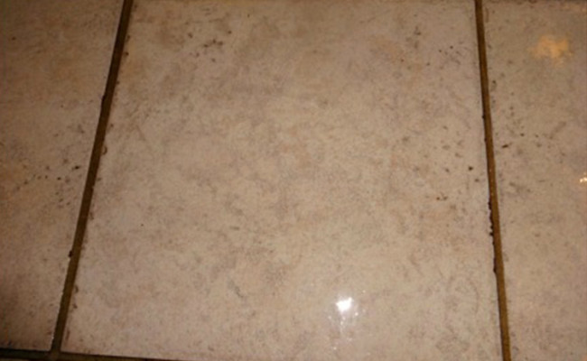 Tile-and-Grout-Entryway-Close-Before-650×400