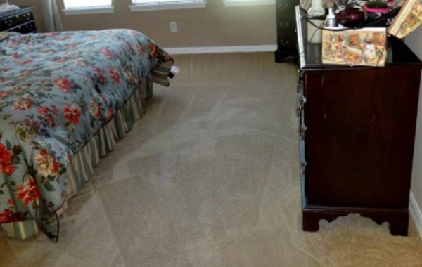 Dirt and Spots Removed from Carpet