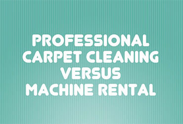 Professional Carpet Cleaning vs Machine Rental